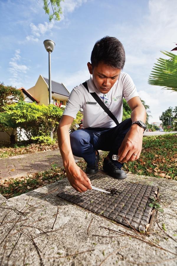 Un funcionario de la Agencia Nacional de Ambiente de Singapur revisa los alrededores de un barrio residencial de ese país en busca de criaderos del zancudo 'Aedes aegypti'. Foto cortesía: National Environment Agency (NEA), Singapur