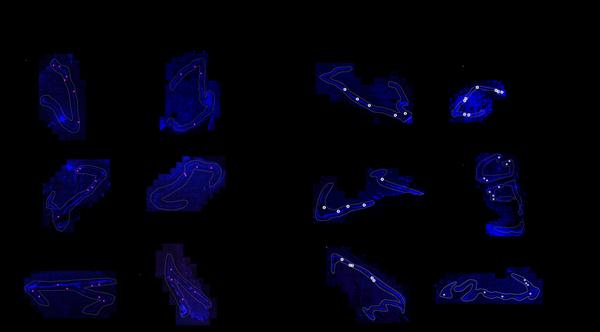 Esta imagen representa la formación de neuronas según la edad. Fotografía: Cell Press