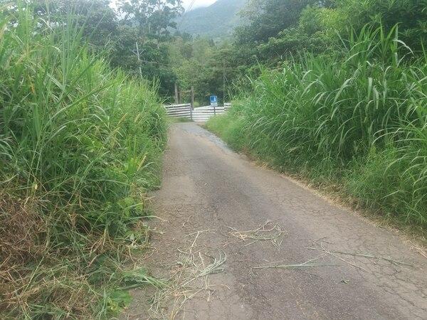 La vía de acceso al Paradero Lacustre Charrarra está sin mantenimiento, mientras el dueño de ese centro turístico, el Instituto Costarricense de Turismo, aseguró que se encarga de cuidar las instalaciones internas. Foto: Fernando Gutiérrez