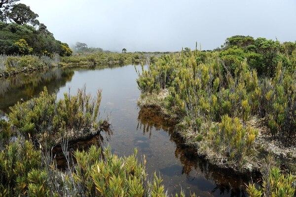 La Reserva Biológica cerro Las Vueltas limita con el Parque nacional Los Quetzales, la Reserva Forestal Los Santos y el Parque Nacional Tapantí - macizo de la Muerte.