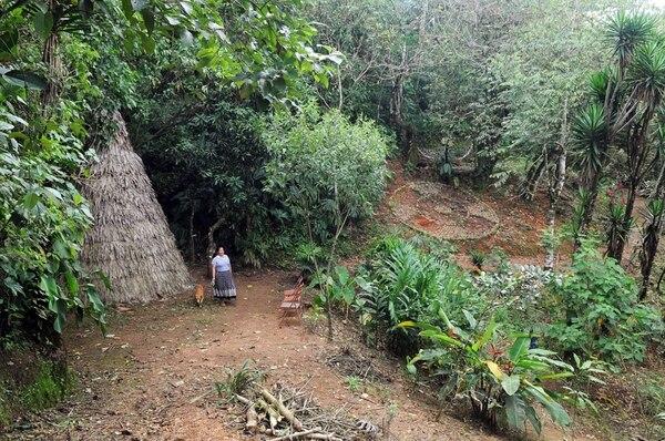 Los pueblos indígenas son los mayores aliados en la conservación de los ecosistemas. | MANUEL VEGA /ARCHIVO