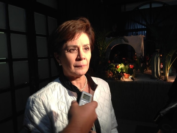 La diputada del PUSC, Gloria Bejarano, deploró que el Congreso no haya avanzado en el proyecto de ley de fertilización 'in vitro'.