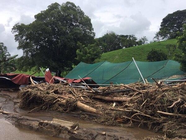 Las corrientes de agua y lodo arrasaron lo que se interponía a su paso en las fincas de Arenal Viejo y lugares vecinos del distrito de Tronadora.
