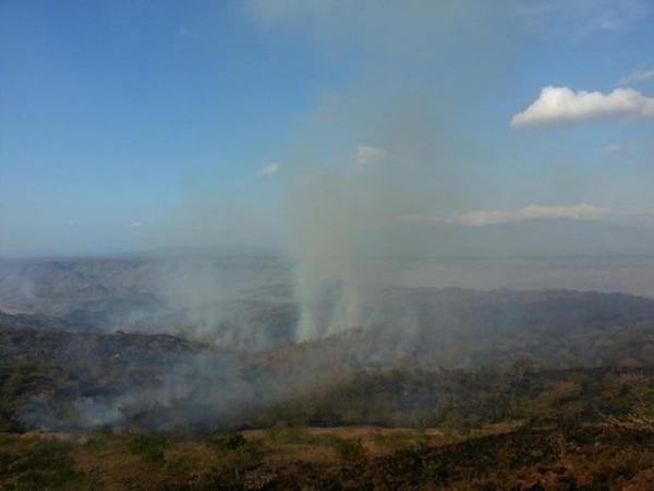 En abril, un incendio afectó el Parque Nacional Santa Rosa.   ARCHIVO