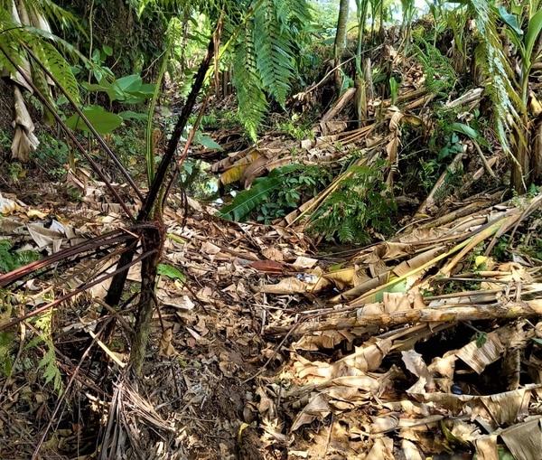 En este montículo de tierra se encontraba semienterrado el cuerpo del fallecido. Foto: Reiner Montero