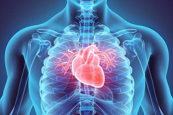 ¿Qué sucede cuando, de forma súbita nuestro corazón está expuesto a mucho estrés?