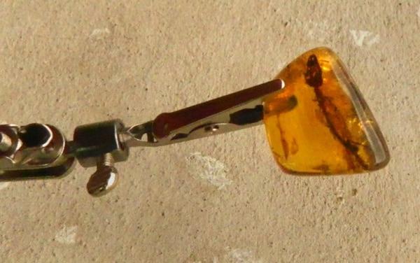 La pequeña pieza de ámbar amarillo, con forma de trapezoide, fue hallada hace varios meses en los yacimientos de Simojovel, al norte del estado suroriental de Chiapas, México, y desde entonces está en estudio. | EFE
