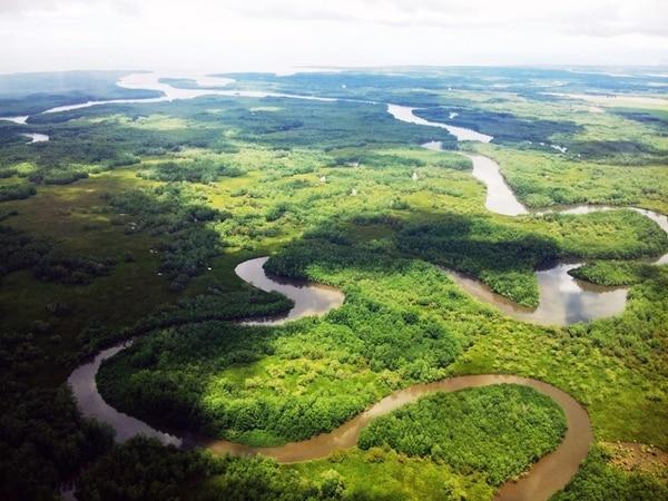 El Humedal Nacional Térraba-Sierpe, es el más grande del país. y fue declarado de importancia internacional por la Convención Ramsar desde 1995. Fotografía: Instituto Tecnológico de Costa Rica, TEC