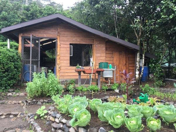 En la estación de compostaje del Hotel Belmar, en Monteverde, se produce abono utilizando los desechos del restaurante. Foto: Gerardo González V.