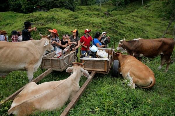 Los boyeros se reúnen en una finca en las afueras del centro de Jaris. Allí, aprovechan para descansar o para desayunar. Fotos: Mayela López