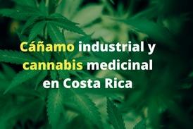 Todo sobre el proyecto de ley del cáñamo industrial y el cannabis medicinal en Costa Rica