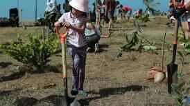Siembra de árboles busca reverdecer a Jacó