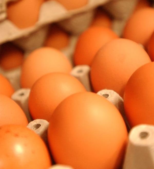 México autorizó la compra de huevos de Costa Rica. | ARCHIVO
