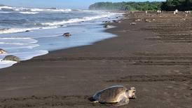 Costa Rica da salto en indicador mundial sobre desarrollo humano gracias a reducción de emisiones