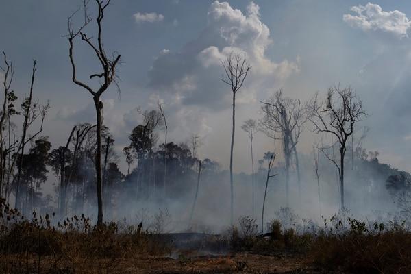 Un área del incendio en la Amazonía este domingo 25 de agosto del 2019. Foto: AP