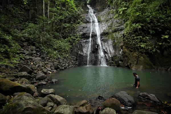 La Isla del Coco también ofrece a los visitantes distinto senderos que pueden recorrer, uno de los más populares es el que lleva a la catarata del río Genio. Fotografía: John Durán