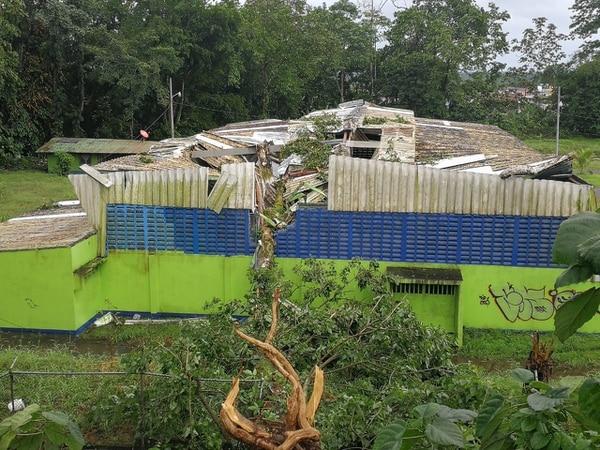 Un árbol afectó el Colegio de Siquirres. Foto: Reiner Montero, corresponsal GN