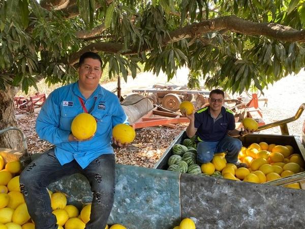 Este lunes, un gran cargamento de sandía y melón fue recogido en la península de Nicoya, para ser llevado mañana a distintos sectores del país con el fin de alimentar a las personas más necesitadas de esas zonas. Foto: cortesía Roberto Álvarez