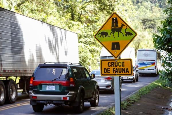 Señales de tránsito que indican un paso de fauna en el Parque Nacional Braulio Carrillo. Foto: Adrián Soto