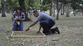 Bosque urbano comienza a florecer en La Sabana