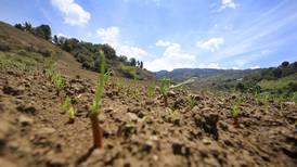 Temperaturas en Centroamérica subieron hasta 1,1 °C en 100 años