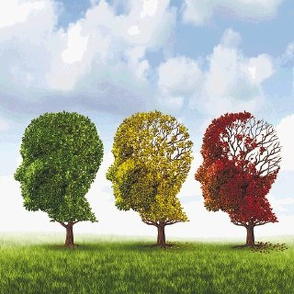 La enfermedad de Alzhéimer es una grave patología cerebral degenerativa, que se diagnostica cada tres segundos en el mundo y actualmente es considerada incurable. Archivo LN