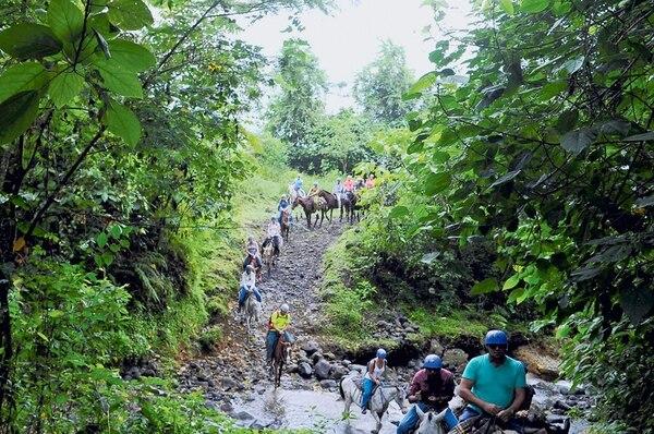 La cabalgata hasta la catarata Río La Fortuna ofrece una forma menos convencional de adentrarse en el verde paisaje de la zona. | FOTO: DIANA MÉNDEZ