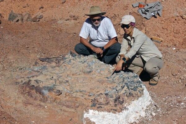 Los investigadores Ricardo Martínez (L) y Cecilia Apaldetti junto a un fósil de 220 millones de años en el Parque Nacional Ischigualasto en San Juan Provice, Argentina, el 9 de abril de 2019 (Photo by HO / IMCN / AFP)