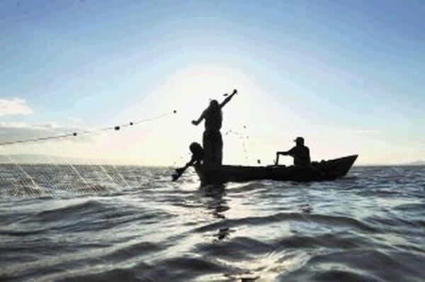Actividades como la pesca se ven afectadas por variaciones en la distribución de las especies marinas, dada el alza de la temperatura del agua. | AFP.