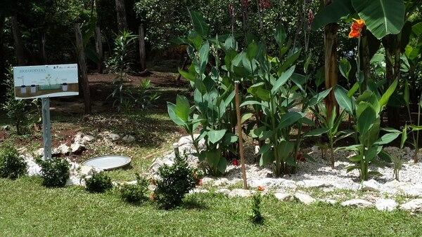 Imagen de una biojardinera elaborada por voluntarios del proyecto de la Universidad Nacional, en Nicoya.