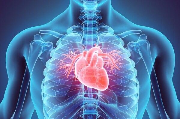 Un corazón deblitado es más vulnerable a no resistir el impacto generado por un susto súbito muy grande.