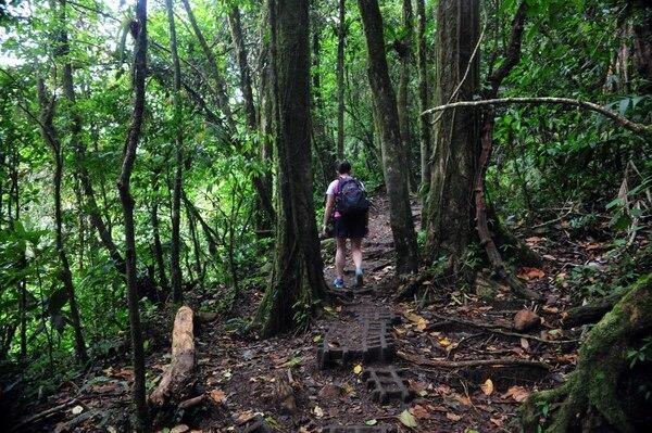 El Parque Nacional Volcán Tenorio se localiza en las provincias de Guanacaste y Alajuela y los senderos están en mal estado. Alonso Tenorio