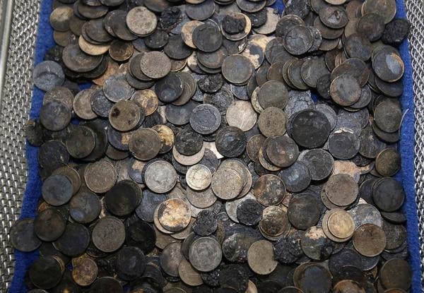 En total 915 monedas de diferentes países se encontraban en el estómago de la tortuga.