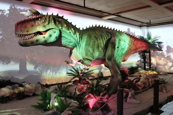 El horario del Museo de los Niños es de martes a viernes de 8 a. m. a 4:30 p. m. y sábados y domingos de 9:30 a. m. a 5 p. m. | MUSEO DE LOS NIÑOS
