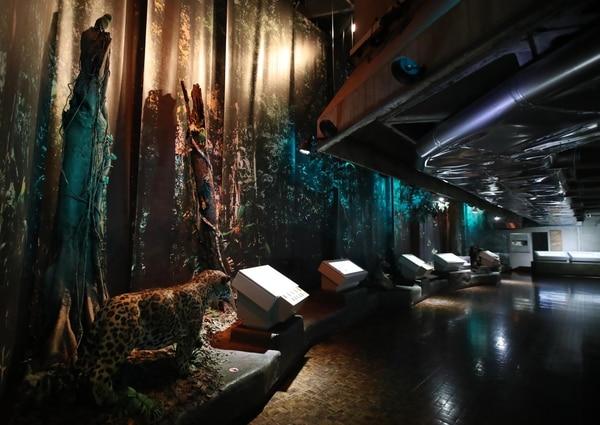 Así lucía anteriormente uno de los sectores del Museo del Oro Precolombino. Como se observa en la imagen, las paredes se encontraban cubiertas. Esta parte de la muestra se eliminó para dejar ver los muros de la estructura . Fotografia: Graciela Solis