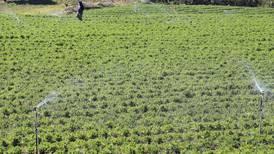 Microsoft, Global Hitss y el IICA se unen para brindar soluciones digitales al agro de Latinoamérica