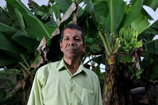 Jonás Obando, de 62 años, cuenta que laboró para una compañía bananera entre 1967 y 1974. El Nemagón, asegura, le deparó esterilidad, alergias crónicas, vista borrosa, además de dolores de cabeza y huesos. También le trajo el divorcio, lamenta este vecino de Puntarenas. | RAFAEL MURILLO