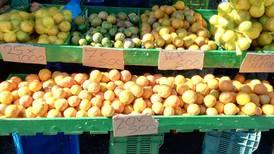 Nueva feria para ayudar a agricultores durante la crisis por covid-19