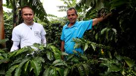 Dota incuba a partir de su café un conglomerado de negocios