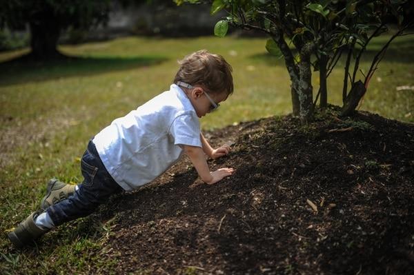 Sobrestimular a niños los frustra y frena su desarrollo