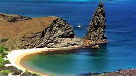 Islas Galápagos se alistan para recibir anidación de tortugas marinas