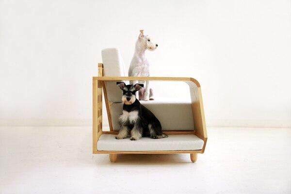 Con sus diseños, el diseñador surcoreano Seungji Mun quiere llamar la atención sobre la importancia de respetar a los animales. En la foto aparecen su perrito Lovey (el de color negro) y Dubby (de color blanco).