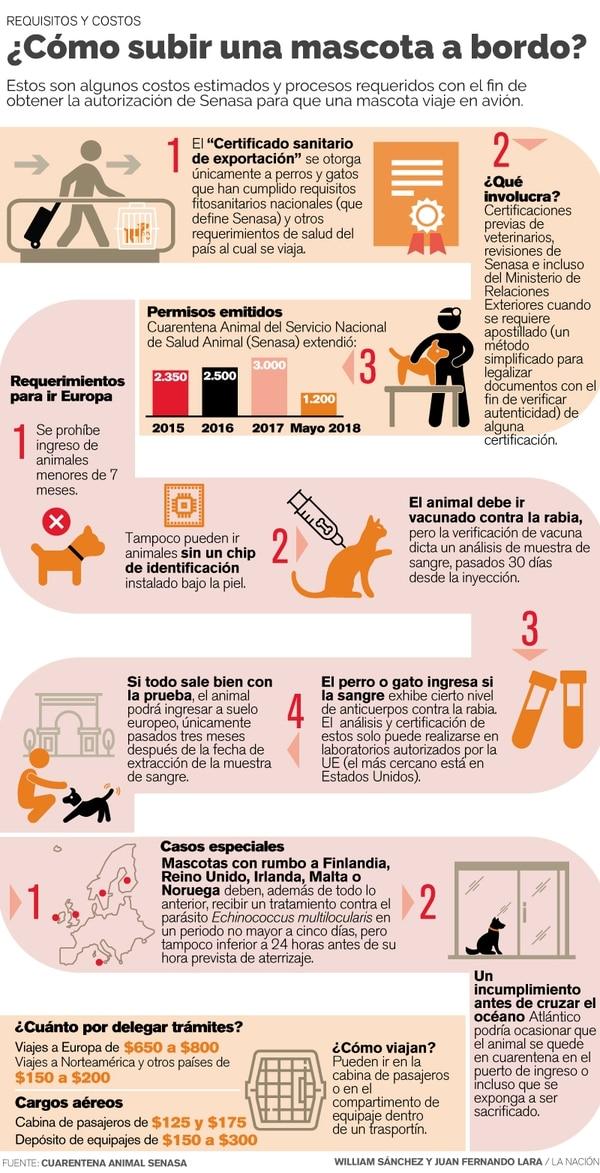 Trámites y costos para llevar perros y gatos de viaje