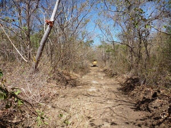 Los brigadistas han construido 12 kilómetros de cortafuegos dentro del parque nacional. | CORTESÍA DE ACG.