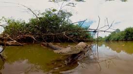 Un recorrido en 360 grados mostrará a los ticos el Refugio de Vida Silvestre Playa Hermosa-Punta Mala y la Isla del Coco