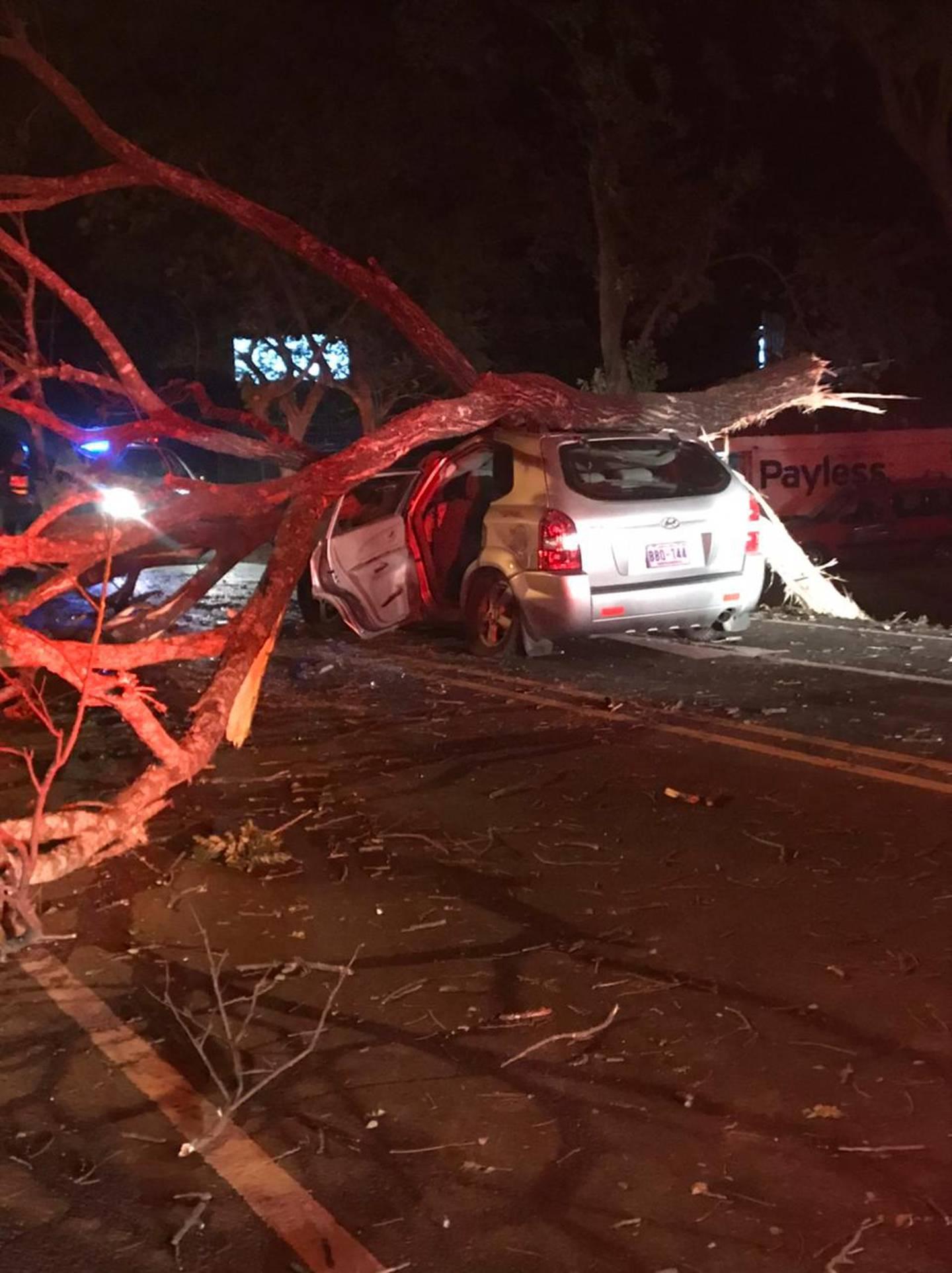 El árbol de unos siete metros cayó directamente sobre el vehículo. Las sobrevivientes iban en el asiento de atrás. Foto  Cortesía de Guana/Noticias.