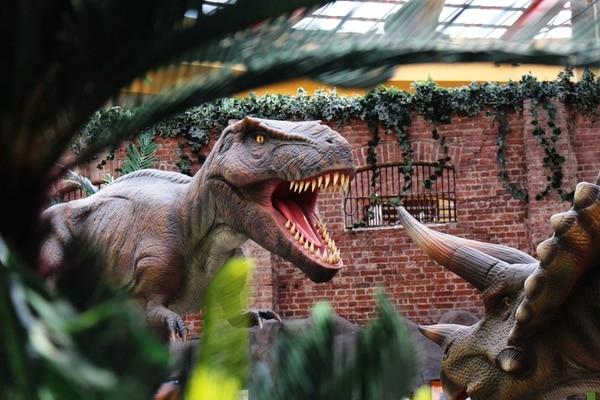 La sala de los dinosaurios, una de las favoritas de los niños, volverá a recibir a los pequeños visitantes. Cortesía de Museo de los Niños