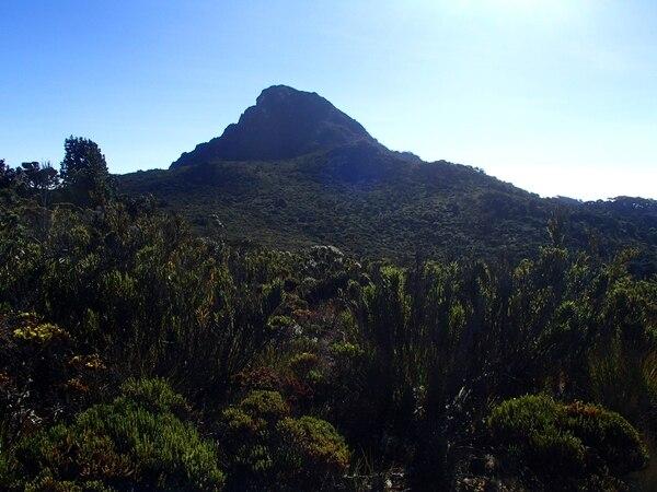 El Parque Internacional la Amistad conserva huellas de las glaciaciones del periódo Cuaternario. Es un sitio de encuentro de flora y fauna procedente de América del Norte y del Sur. Sus bosques son muy húmedos, lluviosos y nubosos. Comprende áreas protegidas de Costa Rica y Panamá. Fue declarado patrimonio mundial en 1983.   BERNAL VALDERRAMOS PARA LN