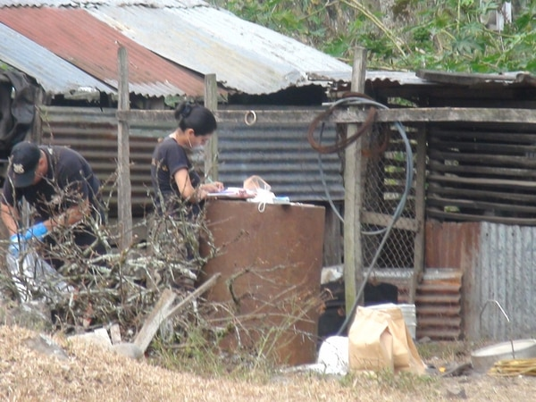 El OIJ allanó un matadero ilegal en el sector conocido como Camusa, en el centro de Turrialba. Había carne en recipientes de plástico, osamentas, romanas y ganchos de carnicería, entre otras herramientas. | JOSUÉ HERNÁNDEZ.
