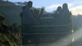 Productores urgen ayuda de 74.000 migrantes para recoger cosechas